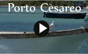 agriturismo area video porto cesareo